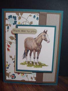 A quarter horse for you by Stamp Lady - Cards and Paper Crafts at Splitcoaststampers