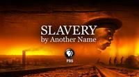 Slavery by Another Name is a 90-minute documentary that challenges one of Americans' most cherished assumptions: the belief that slavery in this country ended with the Emancipation Proclamation. The film tells how even as chattel slavery came to an end in the South in 1865, thousands of African Americans were pulled back into forced labor with shocking force and brutality.