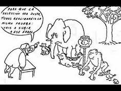 El absurdo sistema educativo de las escuelas (Plano creativo)