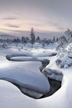 Lapland Snowscape | Content in a Cottage