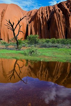 Uluru Reflections, Northern Territory (what used to be called Ayers Rock now has it's native name), Australia Western Australia, Australia Travel, Melbourne, Ayers Rock, Road Trip, Victoria, Beautiful Landscapes, Wonders Of The World, Places To See