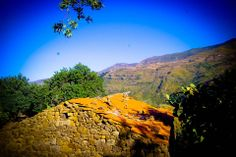 #azzfoun #algeria #africa #travel #photography #pocketkeb