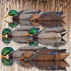 Prairiewind Decoys. Back Water Mallard Duck Decoys 6pk (Z8070) by ...