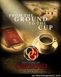 #organo gold #organo coffee #ganoderma www.whatisorganogold.info