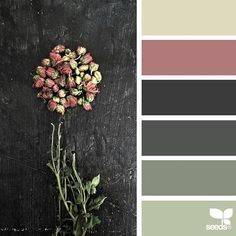 today's inspiration image for { foraged hues } is by @diana_lovring ... thank you, Di, for another amazing #SeedsColor image share!