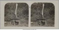 Man en paard onder afdakje bij waterval