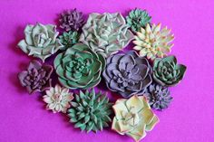 Mini Succulent Tutorial: https://www.facebook.com/media/set/?set=a.10151815109204789.1073741869.394307024788&type=3