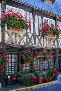 The charming port town of Honfleur - in the Calvados region of Normandy, France Region Normandie, Normandie France, Fachada Colonial, Beautiful Flowers, Beautiful Places, Belle France, Beau Site, Honfleur, Visit France
