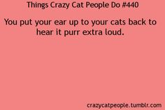 Things crazy cat people do: You put your ear up to your cat's back to hear it purr extra loud.