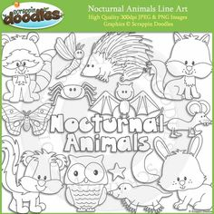 Nocturnal Animals Line Art