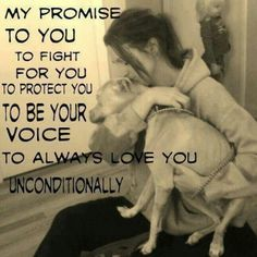 My promise to you is to fight for you, to protect you, to be your voice and to always love you unconditionally. I Love Dogs, Puppy Love, Cute Dogs, Big Dogs, Dog Quotes, Animal Quotes, Animal Pics, Animal Funnies, Lovers Quotes