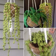 The crochet string of pearls plant was simple to make! Here's how I did it: 💚 I used a crochet pompom edging technique - there are lots of… Crochet Flower Patterns, Crochet Designs, Crochet Flowers, Loom Patterns, Crochet Home, Cute Crochet, Crochet Summer, Crochet Art, Learn To Crochet