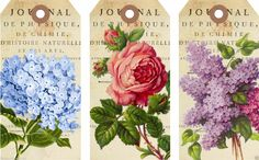 """6 Large """"Floral"""" Hang Gift Tags for Scrapbook Pages 51 