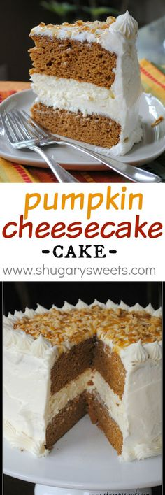 Pumpkin Cheesecake Cake: two layers of delicious pumpkin cake with a creamy cheesecake center. Frosted with cream cheese frosting!: Pumpkin Cheesecake Cake: two layers of delicious pumpkin cake with a creamy cheesecake center. Frosted with cream cheese frosting!