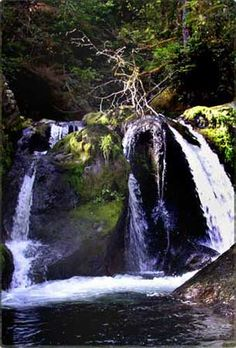 Olympic Peninsula Waterfall Trail  A Magical Misty Tour  Discover the Peninsula through a new looking glass – the Olympic Peninsula Waterfall Trail! Spring runoff creates a great time to get the full effect of the rushing water of these falls.