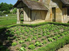 the Queens farm