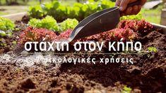 Η καλύτερη αξιοποίηση της στάχτης από το τζάκι και τον ξυλόφουρνο είναι η χρήση της στον κήπο! H στάχτη από την καύση των ξύλων έχει πολλαπλά οφέλη για τα φυτά και τις καλλιέργειες μας και μπορεί να χρησιμοποιηθεί για την οικολογική λίπανση των φυτών, για την βελτίωση του εδάφους, καθώς και για την οικολογική προστασία των φυτών.