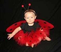Perhaps a ladybug...