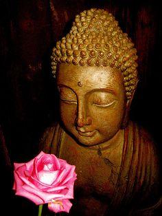 *Buddha & a rose. ;-)