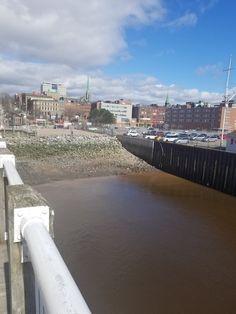 Saint John New Brunswick, Saints