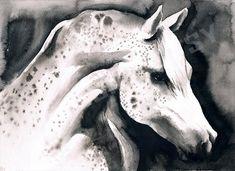 Arabian flecked horse - Animal black ink art print by LelianaShop on Etsy Black Ink Art, Watercolor Paintings, Original Paintings, Star Gift, Running Horses, One Pic, Moose Art, Art Prints, Pictures