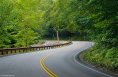 Highway 125 through Green Mountain National Forest, near Middlebury, Vermont