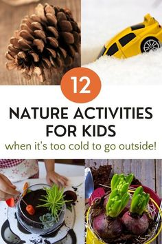 This contains: four of 12 ideas for nature activities showing pinecone, toy car in snow, planting an indoor garden