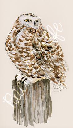 Day 14 - Snowy Owl