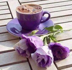 Coffee purple