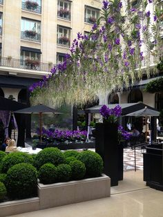 Jeff Leatham's fantastical display of 300 vanda orchids suspended above the Marble Courtyard, Four Seasons Hotel George V, Paris. Photo by Elanie Marais.
