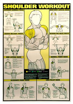 Shoulder workout chart