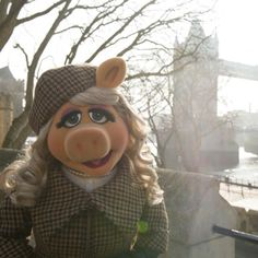 Here is another sneak peek of Miss Piggy wearing Vivienne Westwood Harris Tweed in the movie 'Muppets Most Wanted', out in UK cinemas tomorrow.