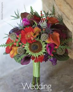Red mini gerberas, red hypericum, calla lily, green sunflowers, fuchsia anemone, purple calla lily, sweet pea, scabiosa pods, blue thistle - love this. All it is missing is some blue.
