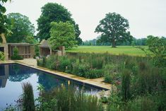 A pool in the Cotswolds, designed by Jinny Blom. Photograph by Charlie Hopkinson.