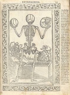 Woodcut skeleton figure, with back to audience, holding up a skull in each hand, one in profile, in a pastoral setting, in front of an opened sepulchre; with a woodcut border and text in Latin on the right side of page, from Berengario da Carpi's Isagogae breues, Bologna, 1523.