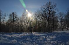 Зимушка! Зима!