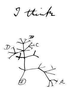 Super darwin tree of life tattoo beautiful 19 Ideas Darwin Tattoo, Life Tattoos, Tattoos For Guys, Darwin Tree Of Life, Biology Tattoo, Darwin Evolution, Evolution Tattoo, Think Tattoo, Family Tree Poster