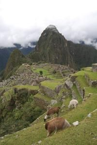 5-Day Salkantay Trek and Machu Picchu Tour from Cusco