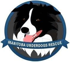 Manitoba Underdogs Rescue in Manitoba, Canada http://www.manitobaunderdogs.org/ http://www.bestcatanddognutrition.com/roger-biduk/canadian-animal-rescues-shelters/ Roger Biduk