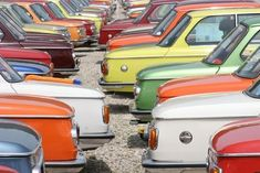 BMW 2002's in every color