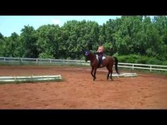 """""""Going back to the basics. Canter. Week 4. Warm up.  Adding the stretch""""  Dressage - YouTube"""