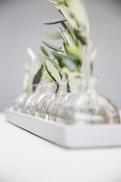 Long Grey Tray with 6 Bottles - Styled with Greenery and Flowers