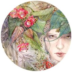 Stephanie Law -  Descants and Cadences : Awakened  2015
