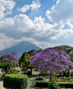Antigua, Guatemala   - Explore the World with Travel Nerd Nici, one Country at a Time. http://TravelNerdNici.com