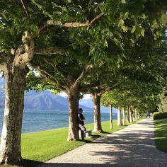 Today at Villa Melzi for #inLombardia365  Location Villa Melzi Lake Como  Follow the team: @viaggiatori @oliverbock @mattiaperra @il_mastromatto @blogdiviaggi . by @blogdiviaggi . #inLombardia #Lombardia #Lombardy #lakecomo #SummerinLombardia #lagodicomo #igerscomo #igerslombardia #igersitalia #italia #italy #whatitalyis#ilikeitaly #discoverglobe#neverstopexploring #ig_italia#ig_lombardia #yallerslombardia #yallersitalia #worldplaces #bestvacations #mytinyatlas #theprettycities…