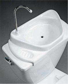 sink/toilet, eco