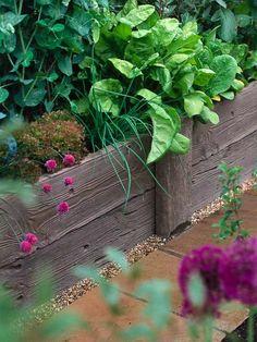 bordure de jardin en bois pour délimiter le potager de l'allée de jardin