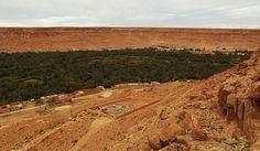 Marokko , Dattelpalmenoasen bei El Jedid, 7-2