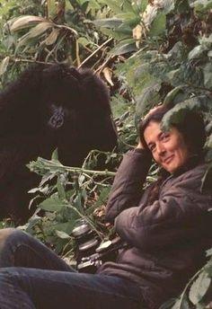 43 Best Dian Fossi Images Dian Fossey Primate Primates