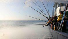 Marine Stewardship Council (MSC), organizzazione non profit che promuove la salute degli oceani attraverso i suoi Standard di sostenibilità ittica, pubblica i risultati della più grande ricerca globale sui consumatori di prodotti ittici, investigandone abitudini, percezioni e attenzione alla sostenibilità a livello nazionale e globale. READ MORE